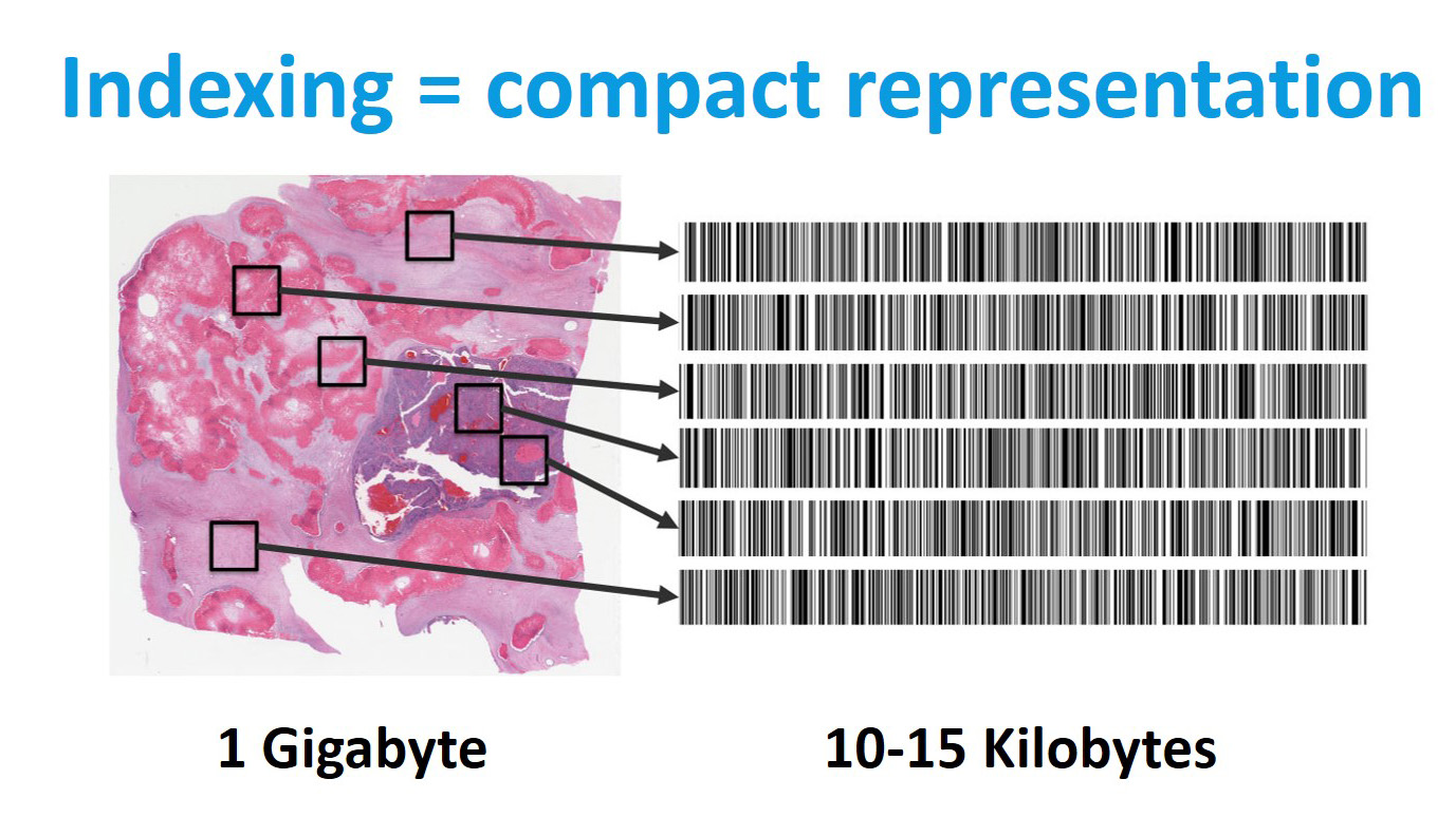 http://Image%20indexing%20equal%20compact%20representation