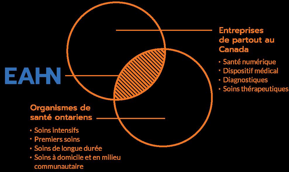 EAHN diagramme